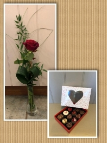 1 red rose in a vase with box of 12 assorted chocolates.